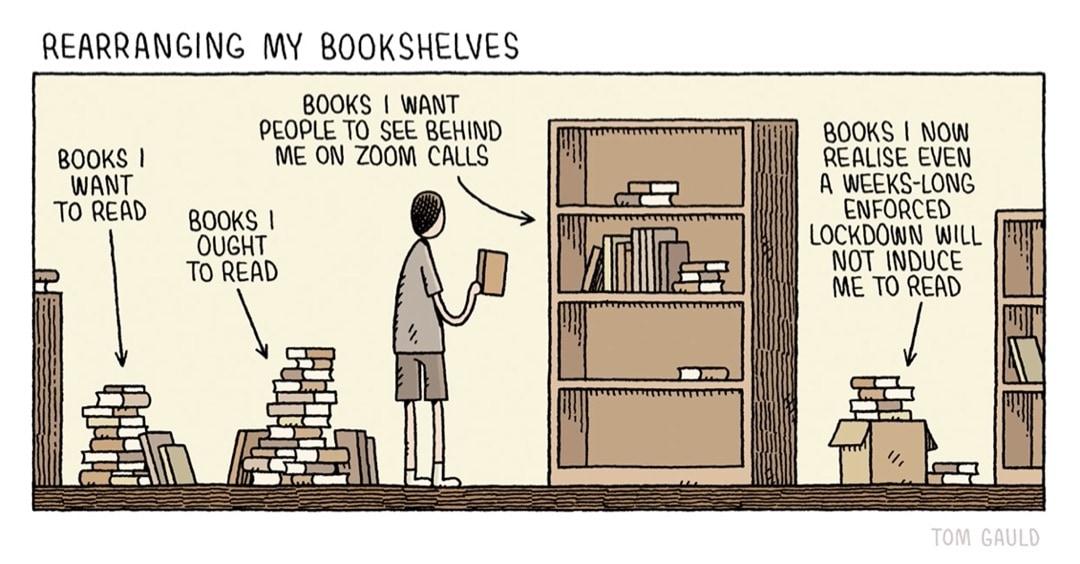 Rearranging My Bookshelves - best cartoons by Tom Gauld